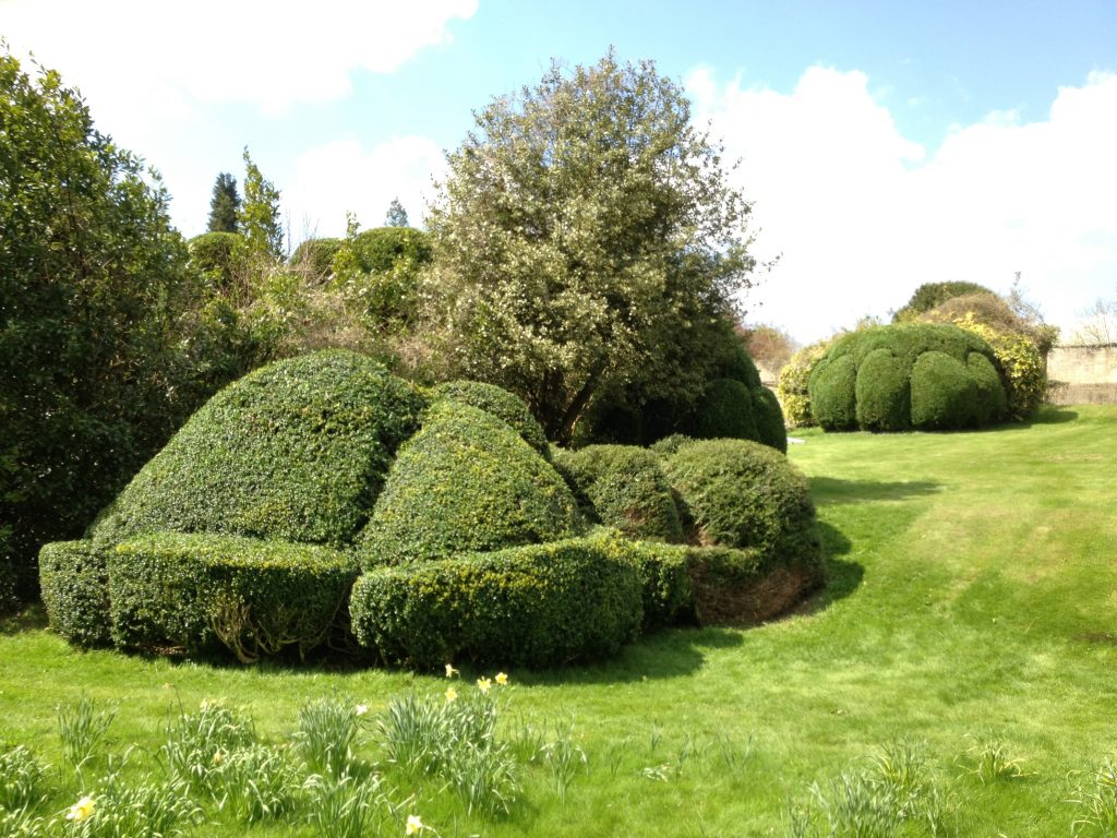 Creative Hedge Trimming