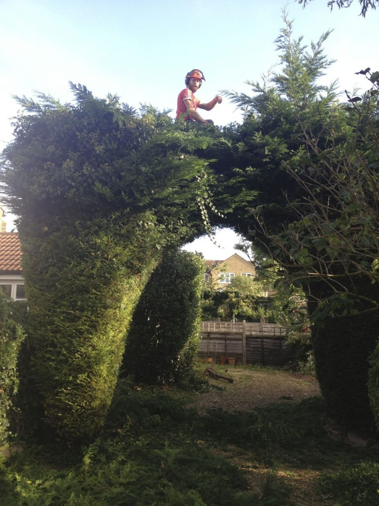 Trimming an arch (before)