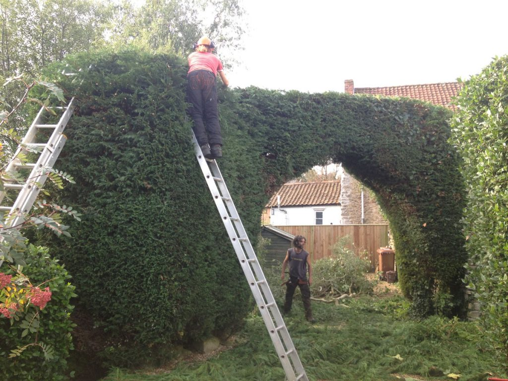 trimming an arch (after)