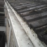 Gutter cleaned and free of moss